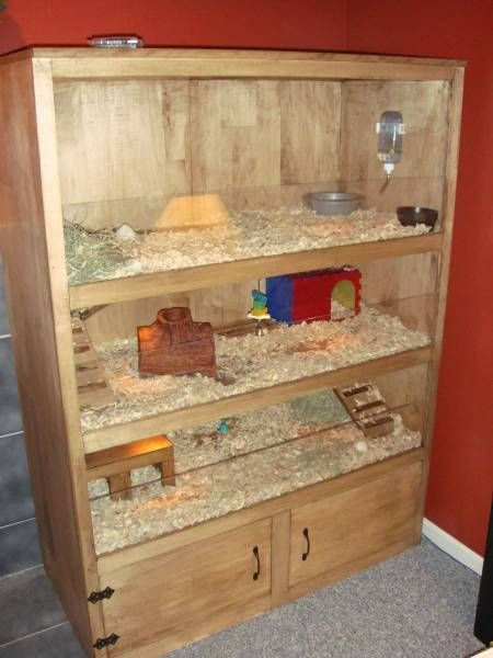 Amazing guinea pig cages guinea pig hub for Awesome rabbit hutches