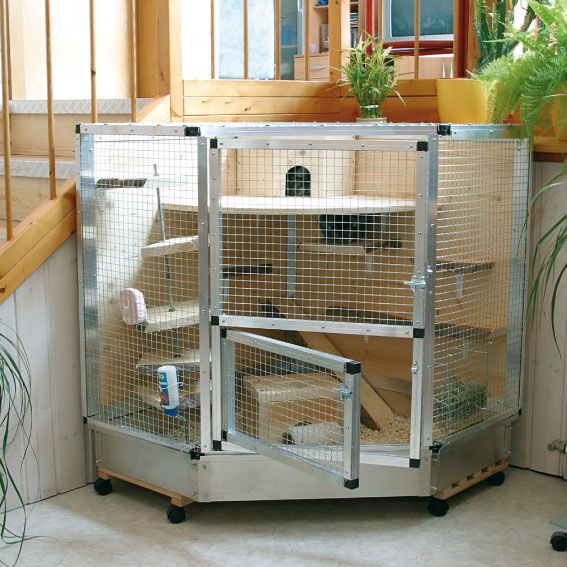 Amazing guinea pig cages guinea pig hub for Small guinea pig cages for sale
