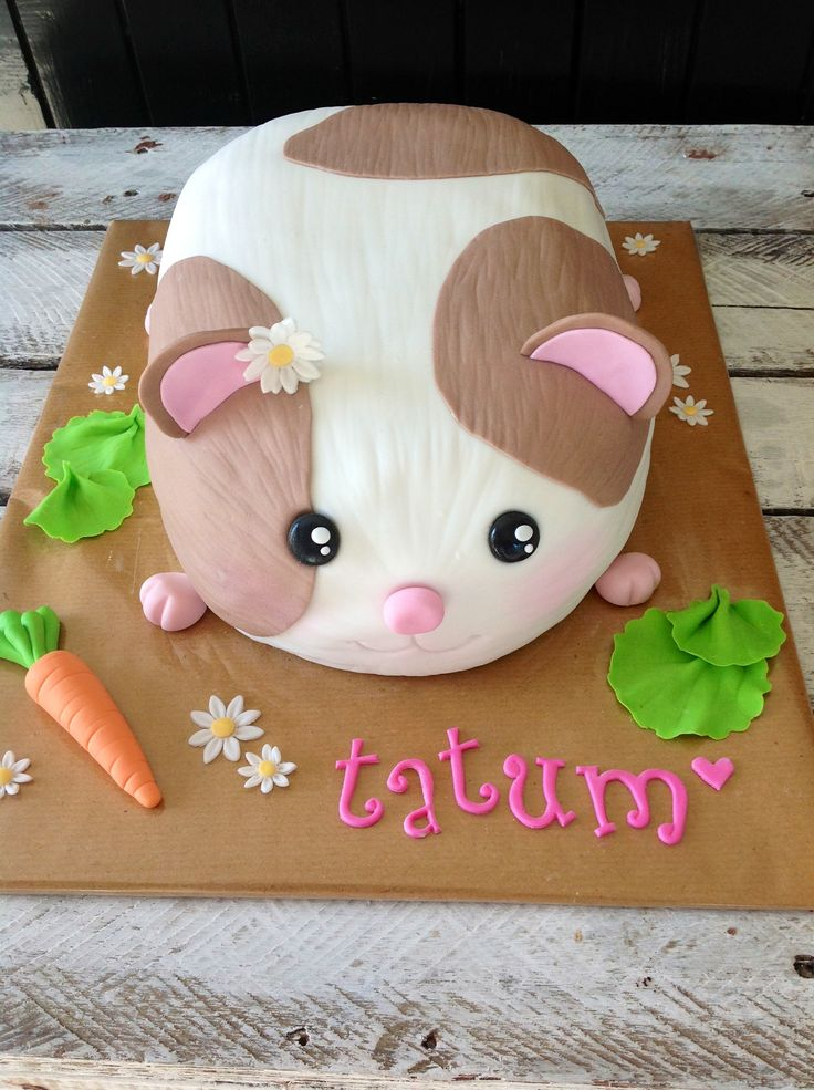 Baby pig eating cake - photo#18